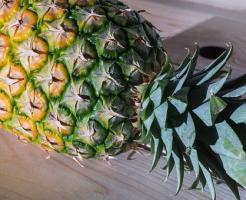 パイナップル 保存 方法