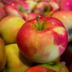 りんごの保存方法について