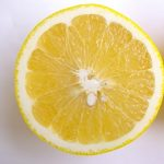 グレープフルーツの保存方法について