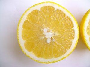 グレープフルーツ 保存 方法