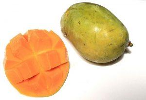 マンゴー 保存 方法
