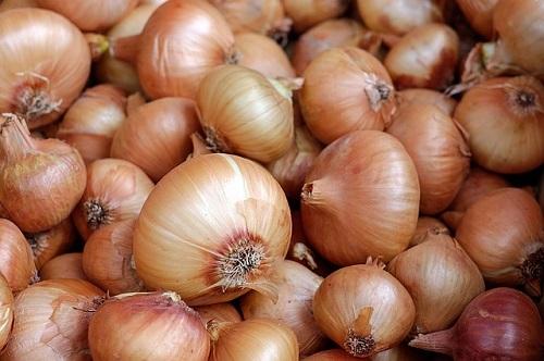 玉ねぎ 収穫後 みじん切り 保存 方法