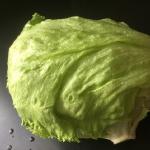 レタスの保存方法と栄養について