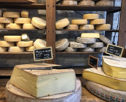 チーズ 保存 方法