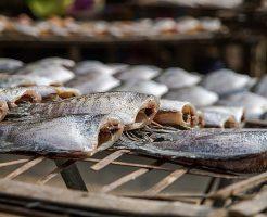 魚 干物 保存 方法