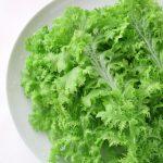 わさび菜の保存方法や作り置きレシピ